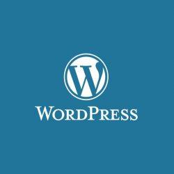 Разработка сайта на основе CMS WordPress
